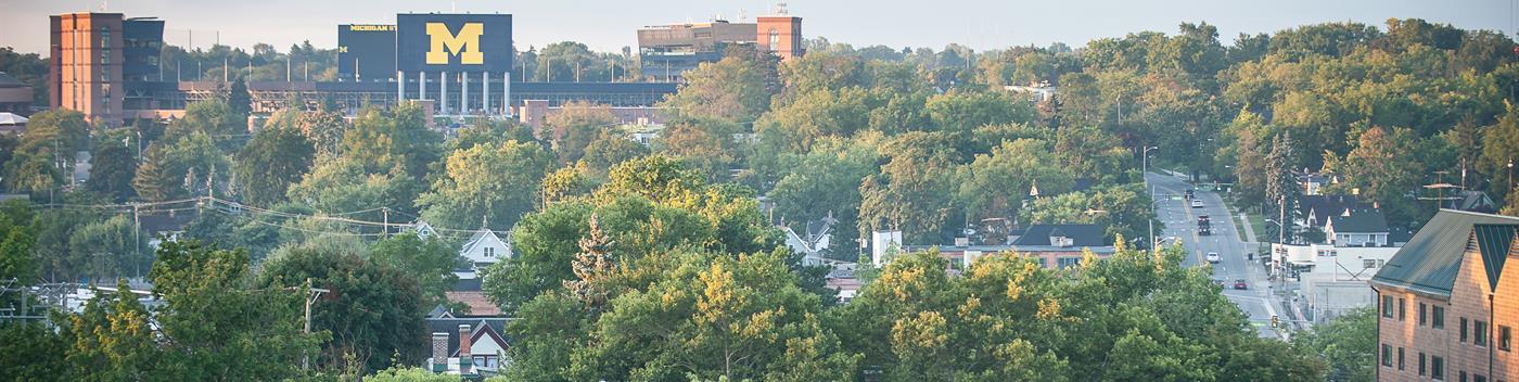 SEO Services in Ann Arbor
